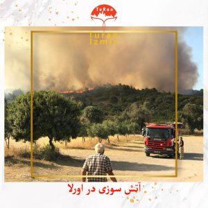 آتش در اورلا به دریا رسید   توران ازمیر   آتش سوزی در اورلا ترکیه