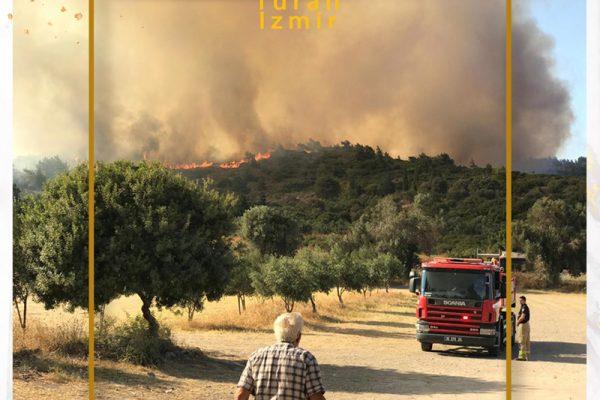 آتش در اورلا به دریا رسید | توران ازمیر | آتش سوزی در اورلا ترکیه