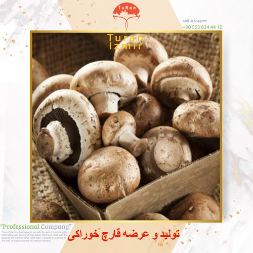 تولید و عرضه قارچ خوراکی